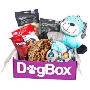 Engångsbox fylld med hundgodis, hundleksaker och hundglädje!